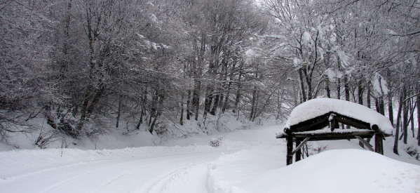 Μισό μέτρο το χιόνι σε ορεινά του Ν. Τρικάλων