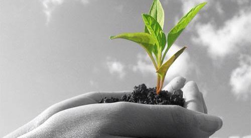 """""""Αγροτική ανάπτυξη σημαίνει στροφή στην ποιότητα"""""""