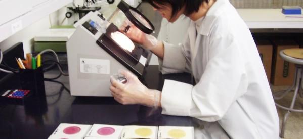 Επίσχεση εργασίας από τους τρικαλινούς μικροβιολόγους