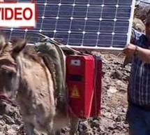 Γαϊδουράκια με φωτοβολταϊκά φορτίζουν…. λάπτοπ