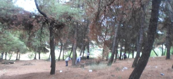Καθαρίστηκε το δάσος Λογγακίου