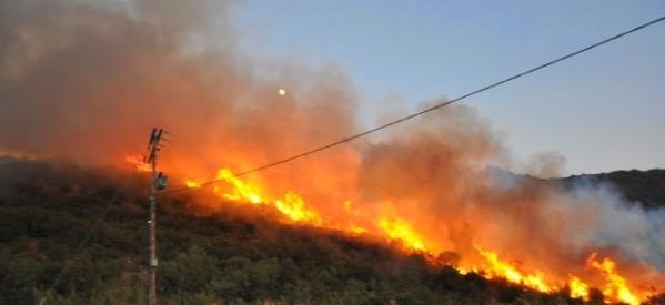 Πυρκαγιά στην περιοχή Κρήνης – Οιχαλίας