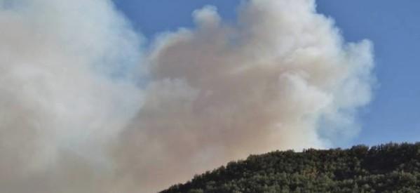 Καίει μεγάλες εκτάσεις η πυρκαγιά στο Καλοχώρι