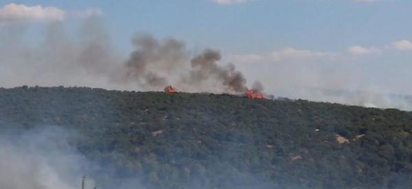 Πυρκαγιά στο Καλοχώρι Καλαμπάκας