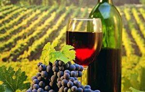 Οι Τάιμς της Νέας Υόρκης αποθεώνουν ένα «άγνωστο» κρασί του Τυρνάβου