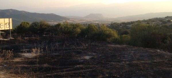 Ανησυχεί για τη φωτιά η ΡΙζοσπαστική Κίνηση Καλαμπάκας