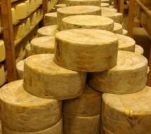 Τους εξαπάτησαν και τους έκλεψαν 8 τόνους τυρί!