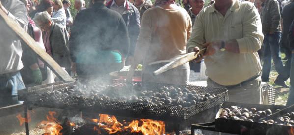Εκδήλωση μνήμης και γιορτή κάστανου στην Καστανιά