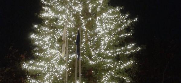Το υψηλότερο Χριστουγεννιάτικο δέντρο φωταγωγήθηκε στα Τρίκαλα