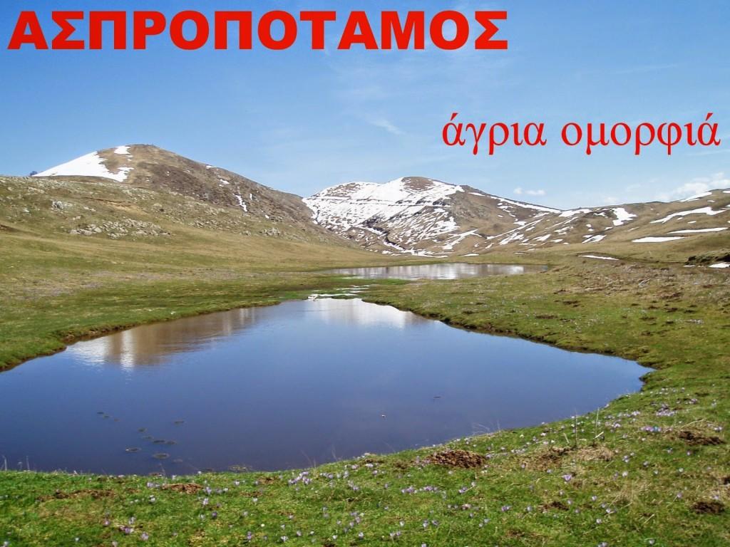 aspropotamos