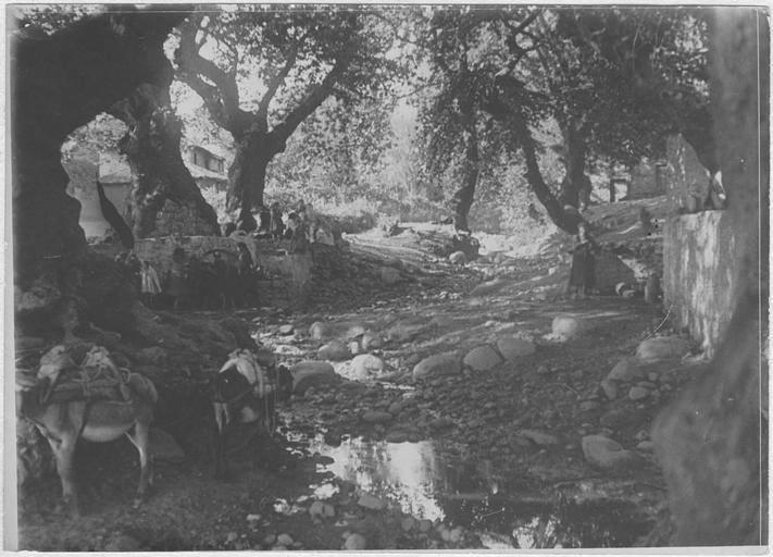 meteora 1917 z