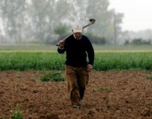 Υποχρεωμένοι να επιστρέψουν το μερίδιό τους από το «πακέτο Χατζηγάκη» 95.000 αγρότες – Αμετάκλητη απόφαση του Ευρωπαϊκού Δικαστηρίου