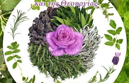 """Ημερίδα για θεραπευτικά φυτά και βότανα στο """"Πανελλήνιο"""""""