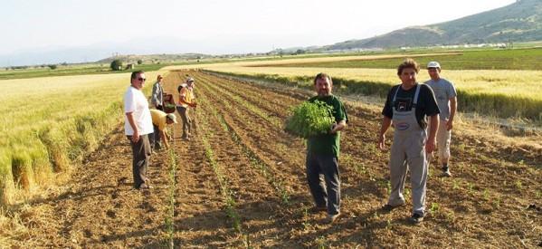 Υποτροφία σε 15 παιδιά αγροτών του Συνεταιρισμού Βόλου