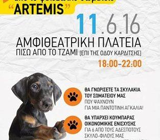 """Ημέρα υιοθεσίας από την ομάδα """"Αrtemis"""""""