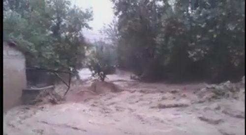 Αμπέλια Καλαμπάκας – Τεράστια καταστροφή