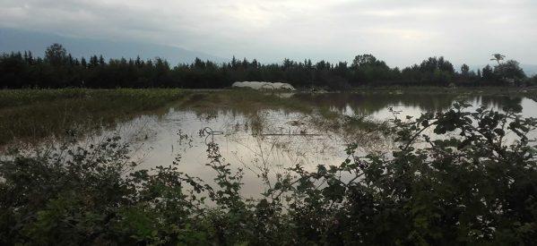 Αιτήσεις για τους πλημμυροπαθείς στο Δήμο Πύλης