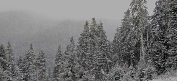 Χαμηλές θερμοκρασίες και χιόνια στα ορεινά του νομού Τρικάλων