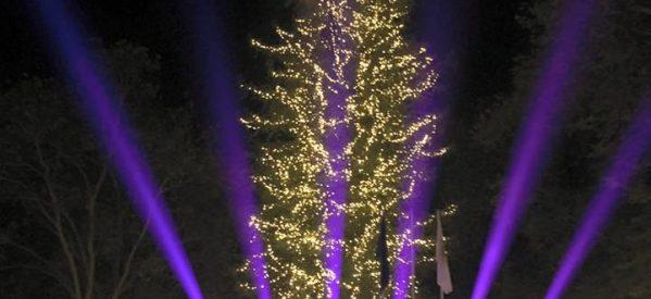 To Σάββατο η φωταγώγηση του χριστουγεννιάτικου δέντρου