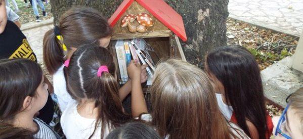 Ένα βιβλιοδέντρο στο Μουσείο Τσιτσάνη!