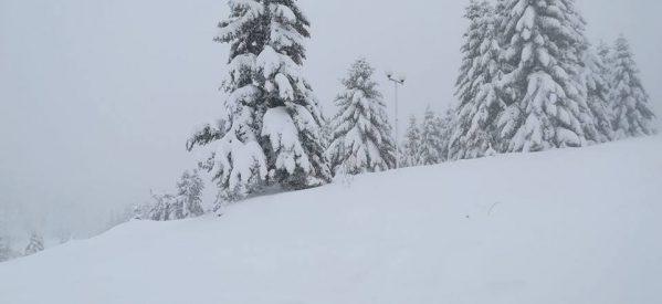 Στους 80 πόντους το χιόνι στα ορεινά του Νομού Τρικάλων –  Σε όλο το ορεινό οδικό δίκτυο απαιτείται η χρήση αντιολισθητικών αλυσίδων για την κυκλοφορία των οχημάτων.