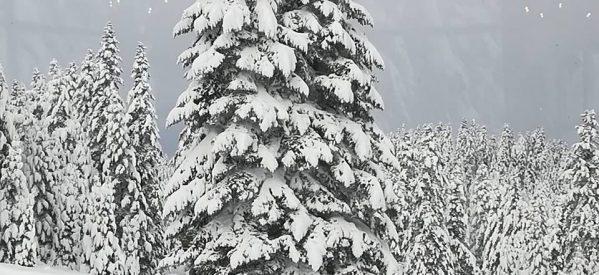 Ξεπέρασε το μισό μέτρο το χιόνι στα ορεινά Τρίκαλα