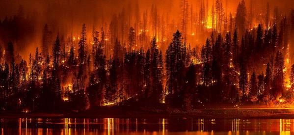 Να ποιος φταίει για τις πυρκαγιές και τα θύματα
