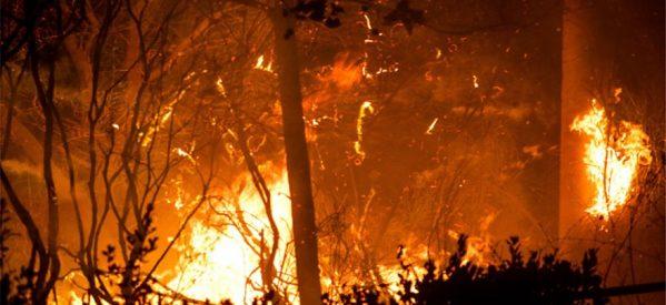 Εθνική τραγωδία με τουλάχιστον 24 νεκρούς από τις πυρκαγιές – Τους 156 έφθασαν οι τραυματίες