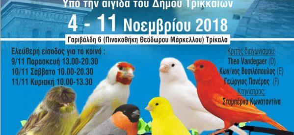 Για δεύτερη χρονιά έκθεση  ωδικών πτηνών στα Τρίκαλα