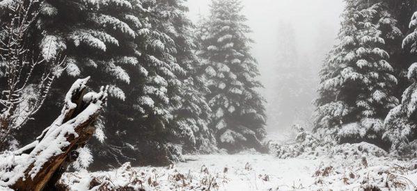 Στα Τρίκαλα τα χιονισμένα χωριά στα ορεινά είναι πανέμορφα [εικόνες]