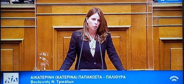 """Κατερίνα Παπακώστα:  """"Κανένα Ζώο Αδέσποτο, κανένα ζώο κακοποιημένο"""""""