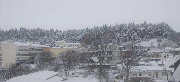 Βόλτα στα χιονισμένα Τρίκαλα [εικόνες]