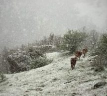 Χιόνια στα Μετέωρα Απρίλη μήνα