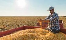 Επιστροφή πακέτου Χατζηγάκη: Απειλή προστίμων και αποκλεισμού αγροτών από ενισχύσεις