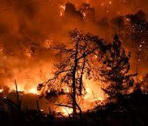 Φωτιές στην Πελοπόννησο: Στα νοσοκομεία με εγκαύματα και αναπνευστικά 20 πολίτες και τέσσερις πυροσβέστες