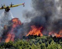 Εύβοια: Οικολογικός «Αρμαγεδώνας» – Κάηκαν πάνω από 340.000 στρέμματα