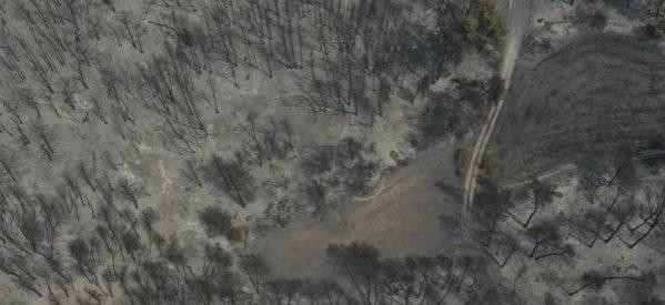 ΣΟΚ και ΔΕΟΣ – Εύβοια:  Drone πάνω από τις καμένες εκτάσεις: Όλη η καταστροφή σε ένα βίντεο