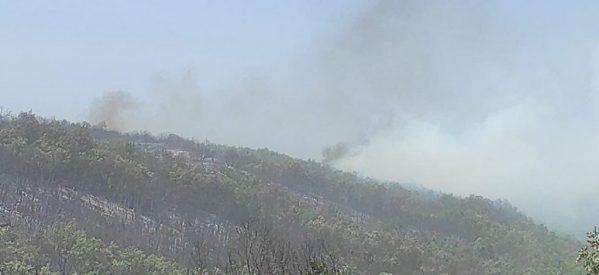 Γρεβενά: Εκτός ελέγχου η φωτιά στο Καρπερό – Εκκενώνονται 4 οικισμοί