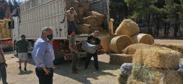 Κίνηση αλληλεγγύης της Περιφερειακής Ενότητας με τους Τρικαλινούς κτηνοτρόφους στη βόρεια Εύβοια