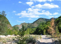 Η θλιβερή εικόνα του θεσσαλικού κάμπου, μετακομίζει και στα βουνά